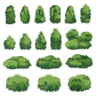Hermoso conjunto de arbustos en forma