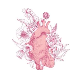Hermoso corazón anatómico realista cubierto de flores de primavera dibujadas a mano con líneas de contorno rosa sobre fondo blanco.
