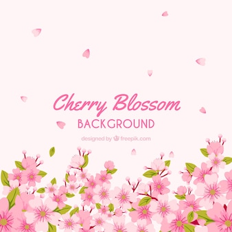 Hermoso diseño de fondo de flor de cerezo