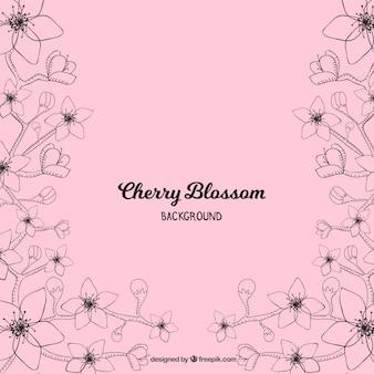 Hermoso fondo rosa de flor de cerezo