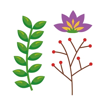 Hermoso icono de decoración floral