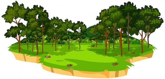 Hermoso paisaje de naturaleza verde.