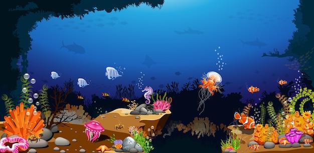 Un hermoso paisaje oceánico por encima de la imaginación.