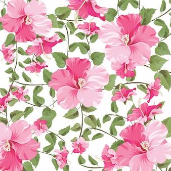 Hermoso patrón de flores de hibisco