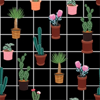 Hermoso patrón transparente de vector con diferentes cactus en muchos tipos de macetas en la línea de control de ventana blanca