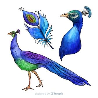Hermoso pavo real en estilo de acuarela