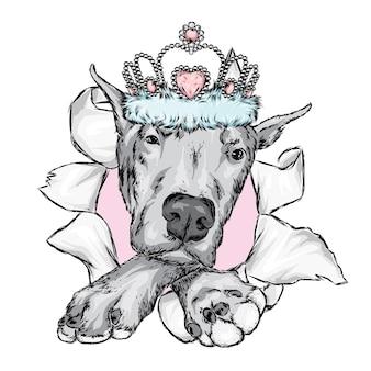Hermoso perro en una corona