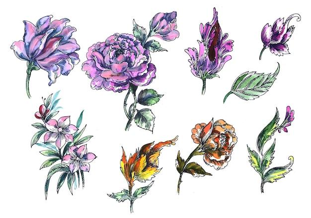 Hermoso ramo de flores set diseño acuarela