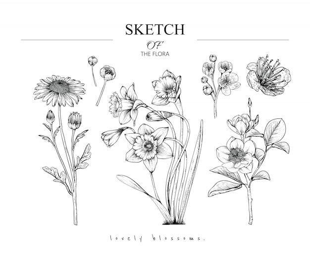 Hermosos dibujos de hojas y flores.