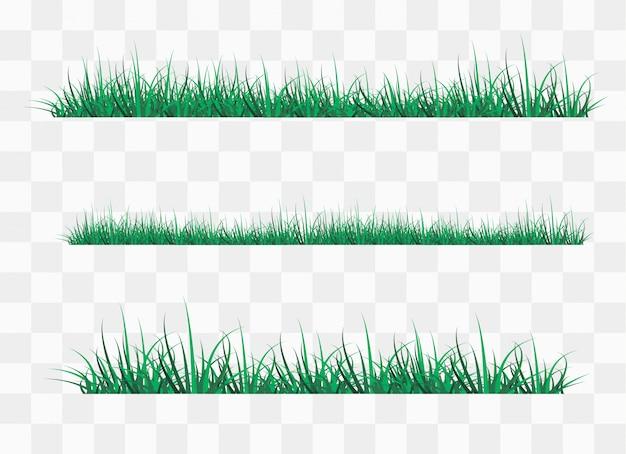 Hierba verde en claro en el bosque,