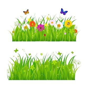 Hierba verde con flores e insectos, sobre fondo blanco, ilustración