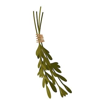 Hierbas aromáticas verdes elemento de diseño mágico de brujería ilustración de dibujado a mano de vector.