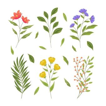 Hierbas botánicas y flores silvestres en estilo retro