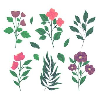 Hierbas botánicas y flores silvestres en estilo vintage