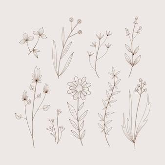 Hierbas y flores silvestres en estilo de diseño retro