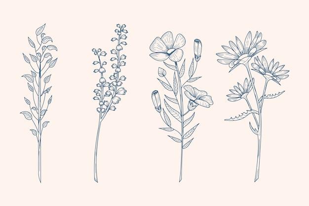 Hierbas y flores silvestres en estilo vintage