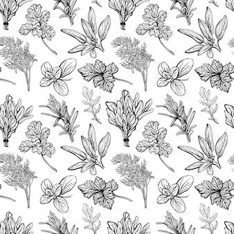 Hierbas italianas fragantes y condimentos ilustración de patrones sin fisuras