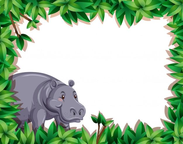 Hipopótamo en borde de naturaleza