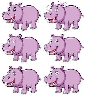 Hipopótamo en seis emociones diferentes