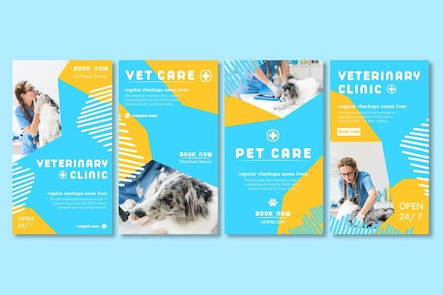 Historias veterinarias de instagram