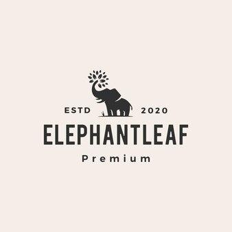 Hoja de elefante deja árbol vintage logo