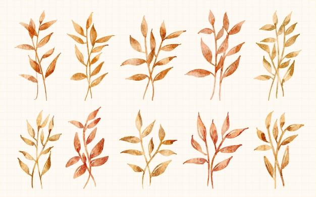 Hoja de otoño pintada a mano en colección de ilustraciones de acuarela