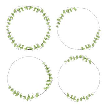 Hojas de eucalipto verde estilo doodle colección marco de ira