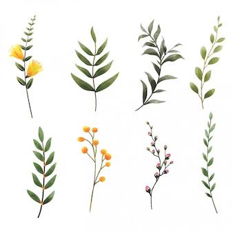 Hojas y flores de estilo acuarela