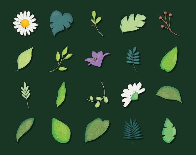 Hojas y flores sobre fondo verde, colorido, ilustración