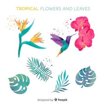 Hojas y flores tropicales en acuarela