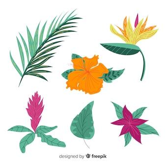 Hojas y flores tropicales dibujadas a mano