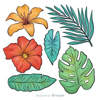 Hojas y flores tropicales dibujado a mano
