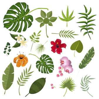 Hojas y flores tropicales.