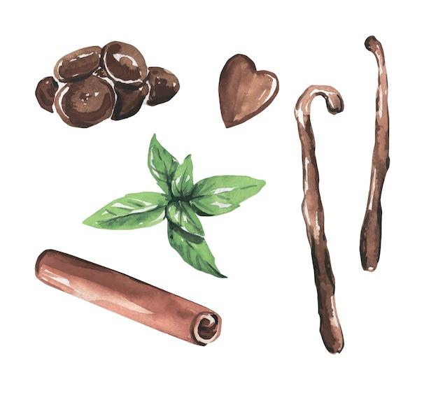 Hojas de menta acuarela, chocolate, palitos de vainilla, canela.