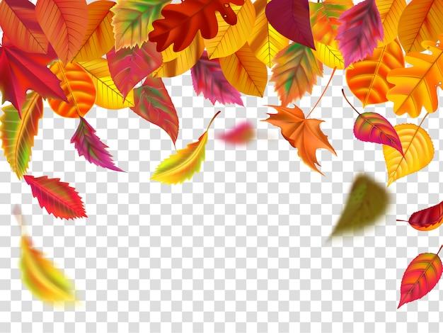 Hojas de otoño caen. la caída de la hoja borrosa, la caída del follaje otoñal y el viento se levanta ilustración de hojas amarillas
