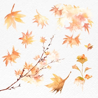 Hojas de otoño establecer gráfico estacional de acuarela vector naranja