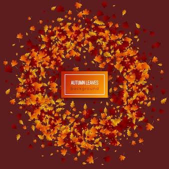Hojas de otoño sobre fondo oscuro.