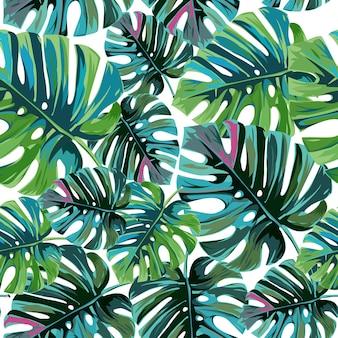 Hojas de palma tropical