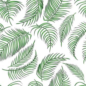 Hojas de palmera de patrones sin fisuras, hoja de selva en blanco