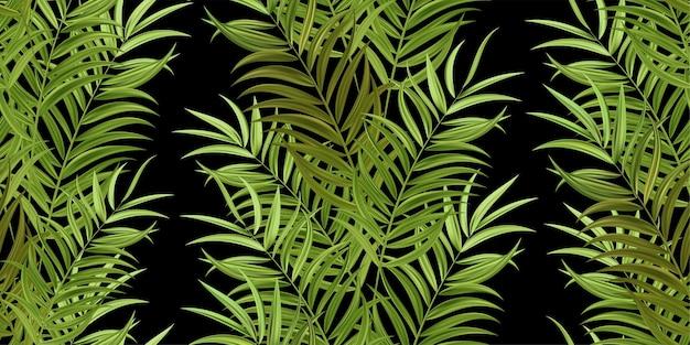 Hojas de palmera verde tropical, selva hojas de fondo de patrón floral vector transparente