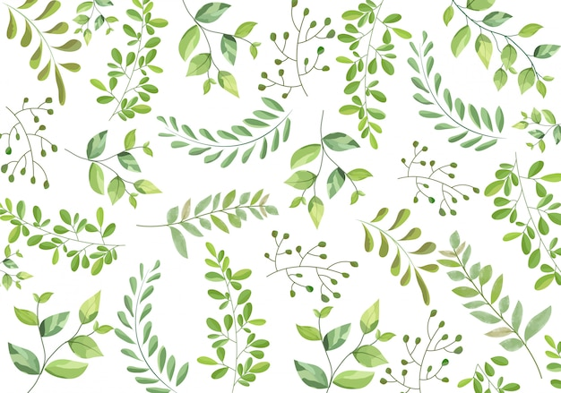 Hojas de patrones sin fisuras de ramas verdes