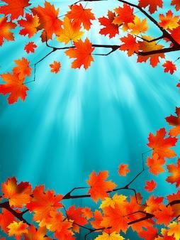 Hojas rojas y amarillas contra un brillante cielo azul. efecto bokeh. archivo incluido