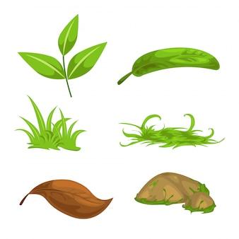 Hojas de té verde y piedra y hierba aislados ilustración