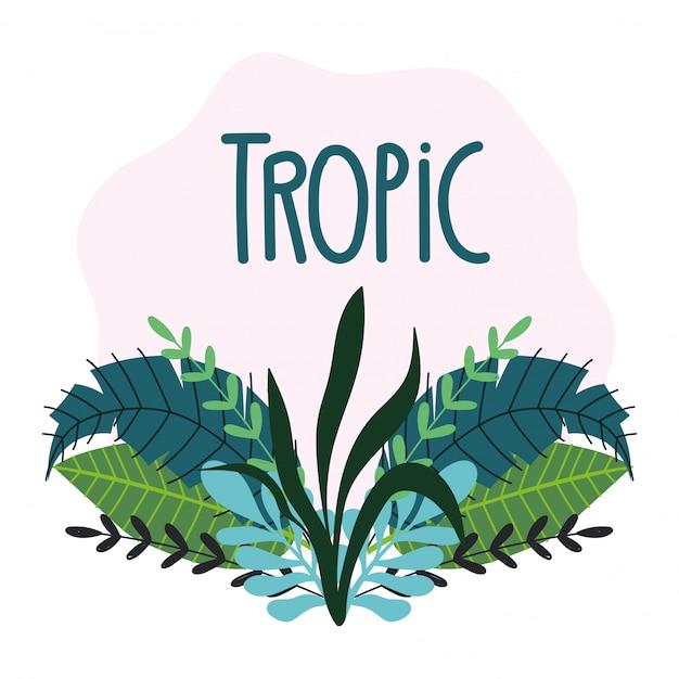 Hojas tropicales textura follaje exótico dibujado a mano letras