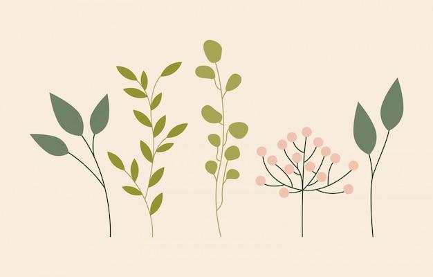 Hojas verdes follaje, estilo plano