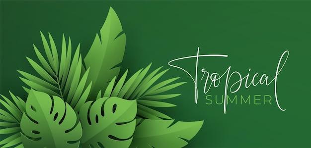 Hola banner de verano. hojas tropicales verdes cortadas en papel de monstera.