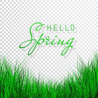 Hola cartel de primavera con hierba verde