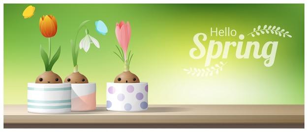 Hola fondo de primavera con flor de azafrán, tulipán, campanilla de invierno
