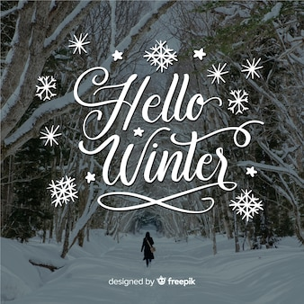 Hola letras de invierno con bosque y nieve