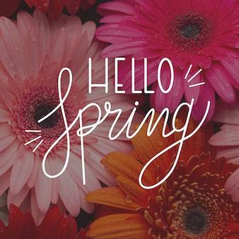Hola letras de primavera con concepto de foto
